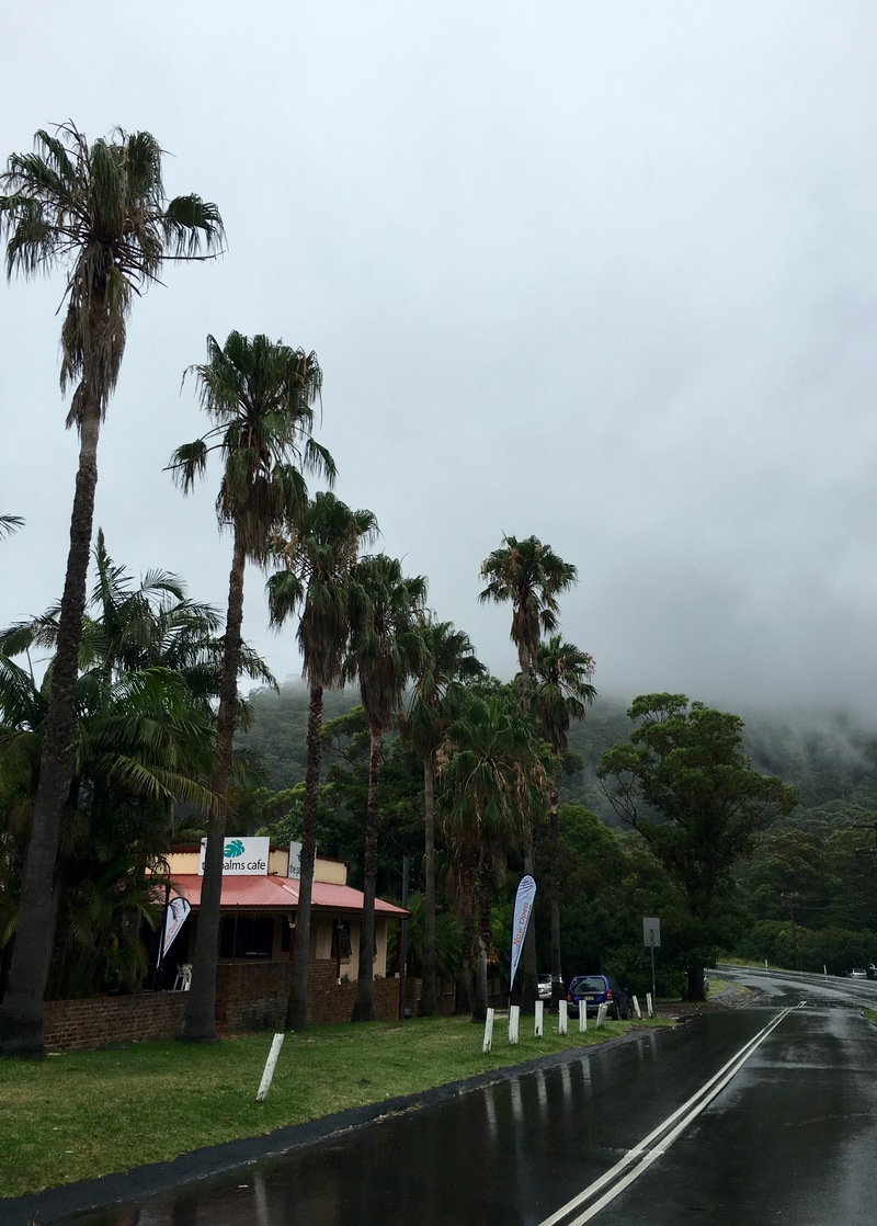 The Palms Café view